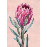 Protea (single)