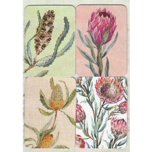 Removable Magnets Card - Australian Flora